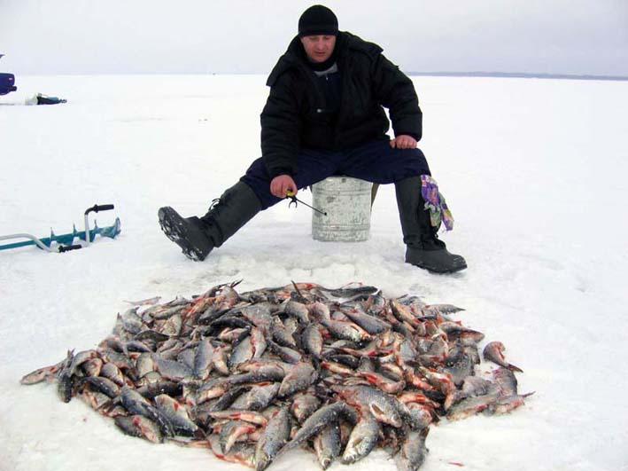 Охота и рыбалка в Астрахани: базы.  Туристическая компания.