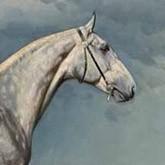 Крепыш - великий орловский рысак с трагичной лошадиной судьбой