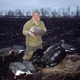 Охота на гуся в Воронежской области