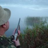 Сроки проведения весеннего сезона охоты на