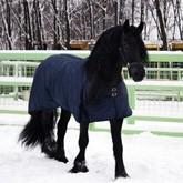 Зима в КСК Левадия: Конные прогулки, верховая езда, ледовый каток